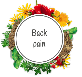 Effective natural products for sciatica and back pain | HillVital