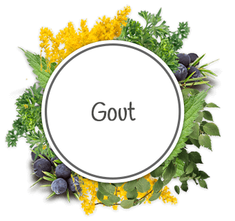 Effective products for gout and gout attack pains | HillVital