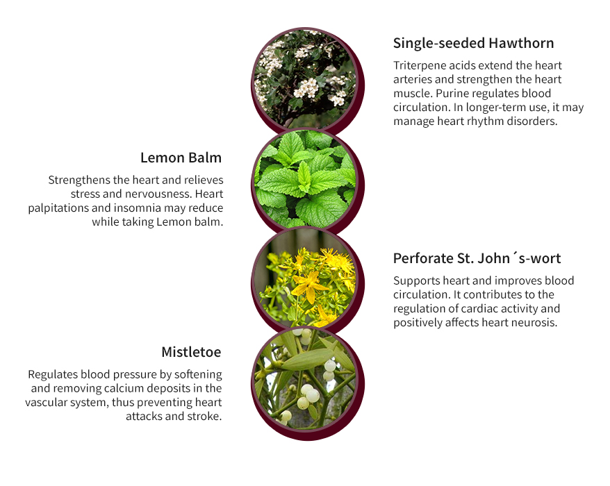 Herbs To Remove Calcium Deposits